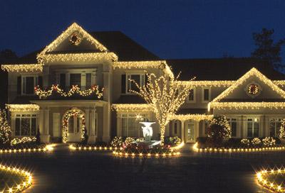 Christmas Lights For Hedges